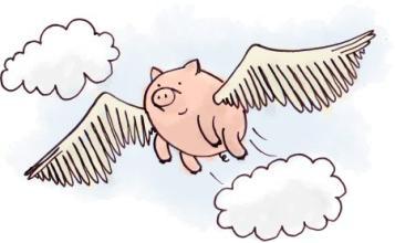 风口上的猪.jpg
