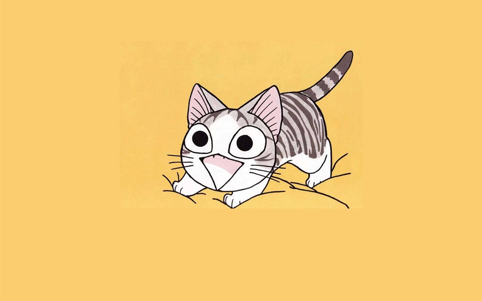 cat-s.jpg