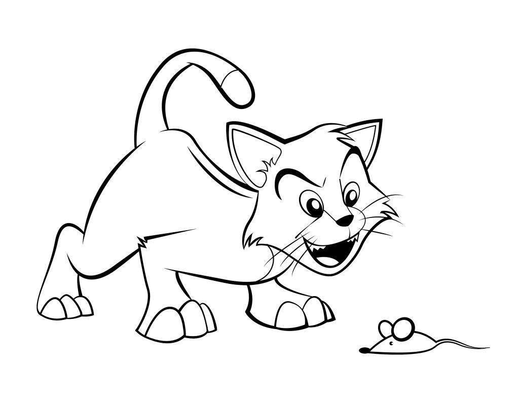 cat-ss.jpg