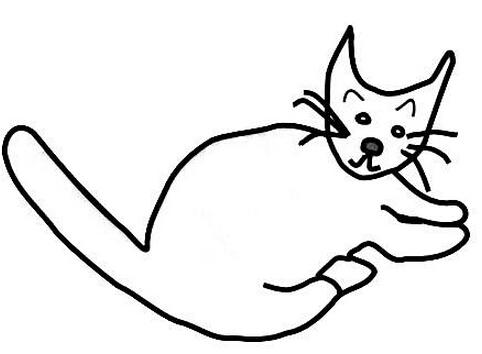 cat-sss.jpg